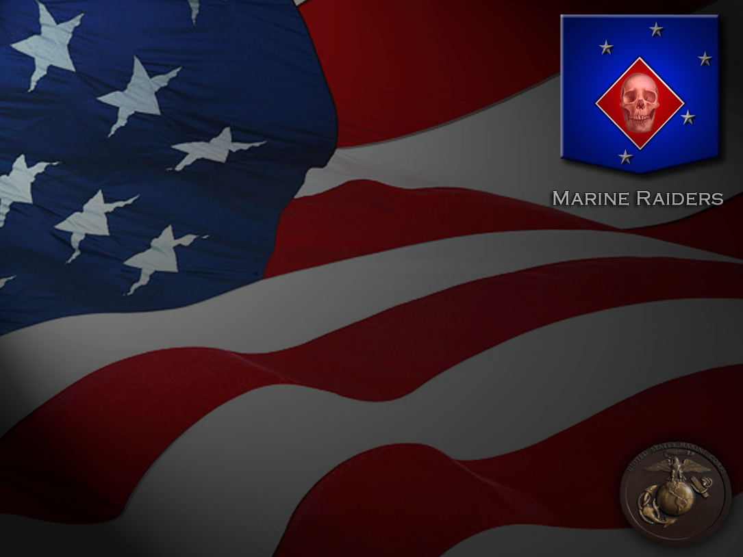 This picture is a remake of my USMC patriot wallpaper.